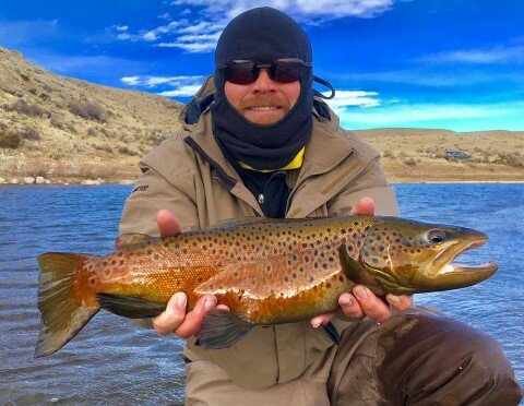 Guided fly fishing trips casper wyoming cowboy drifters for North platte fishing report